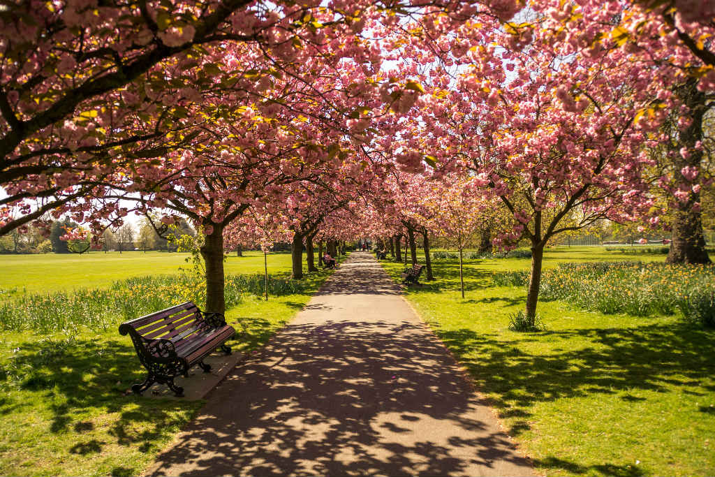 beautiful hyde park, Magic of London - Part 1, Why I love London by Miss F Mixer